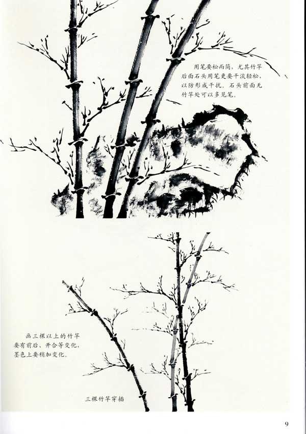 图例  竹笋和竹鞭的画法