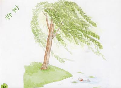 手繪版知識樹圖片大全