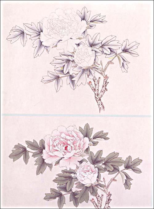 简单工笔牡丹花步骤图