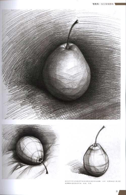 梨子素描图片步骤简单