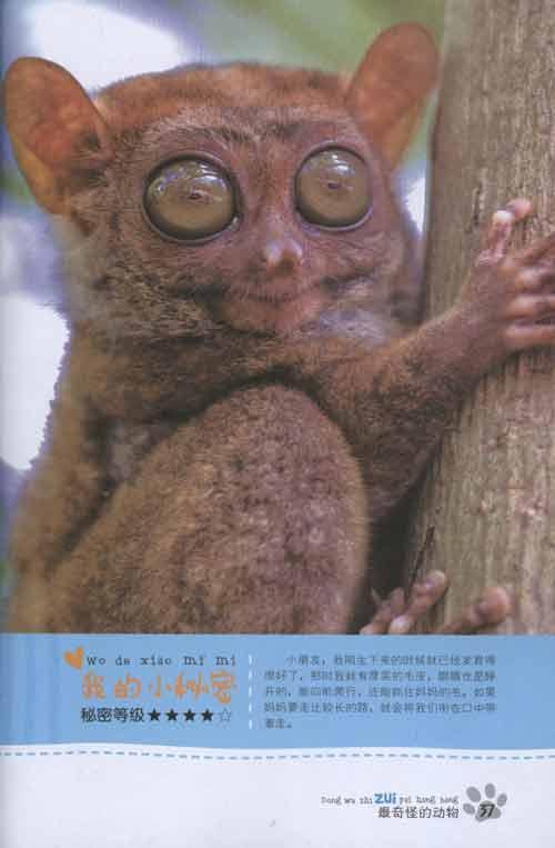 最奇怪的动物-禹田-科普/百科-文轩网