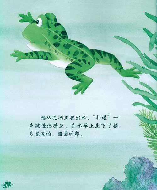 简笔画小蝌蚪找妈妈图片