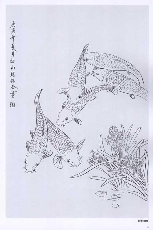 工笔鱼经典白描 1